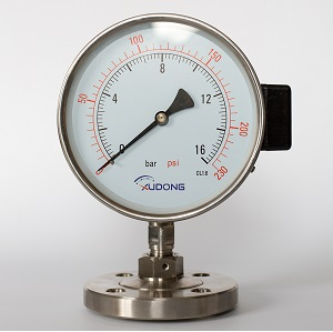 Flush Flanged diaphragm Seal Pressure Gauge