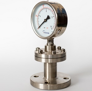 Flanged Mounted Diaphragm Seal Pressure Gauge