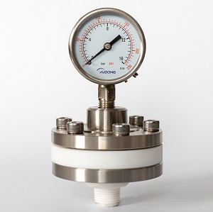 PTFE diaphgram seal pressure gauge
