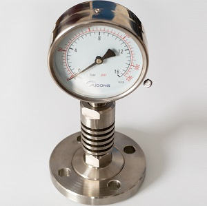 Chemical Seal Pressure Gauge